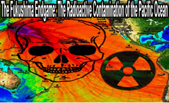 The-Fukushima-Endgame-The-Radioactive-Contamination-of-the-Pacific-Ocean