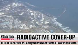 fukushima-coverup-radiation-ocean-energy-nuclear-japan