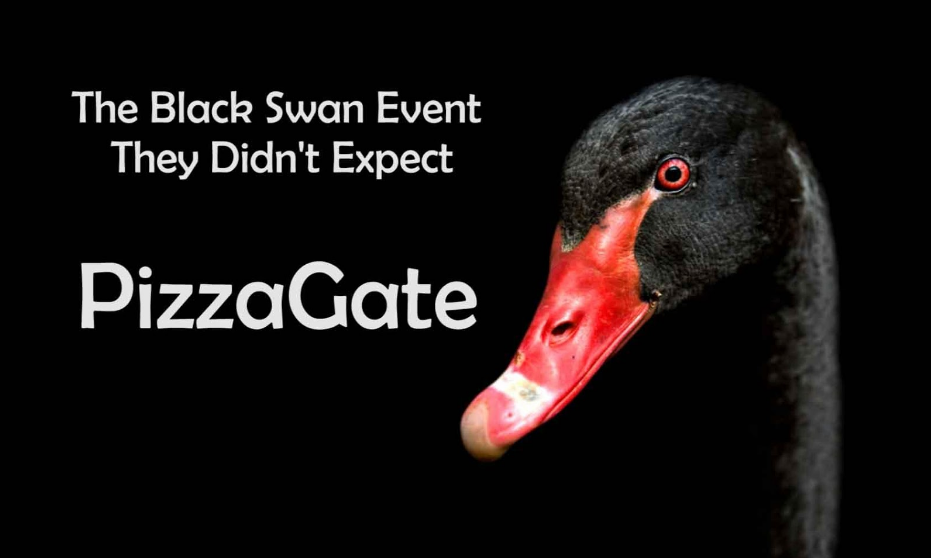 The Black Swan Event They Didn't Expect: PizzaGate Screen-Shot-2016-12-02-at-4.21.09-PM